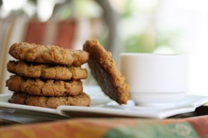 Peanut Butter Cookies 2 by laurenjacob