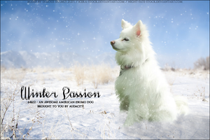 Winter-Passion by FamousShamus109