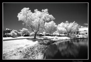 East Coast Summer IR by Enkased