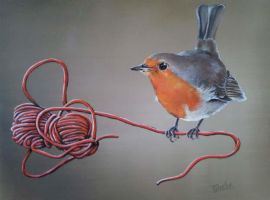 Robin on a wire by FanDante