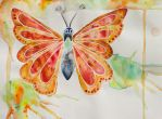 Orange butterfly by FranciscaMeena