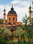 The Red Mosque at Schwetzingen Castle garden by pingallery