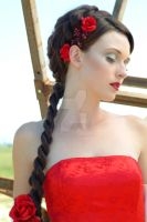 red roses...red dress by jillein-portraits