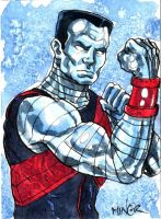 Colossus - Deadpool Style by Jerantino