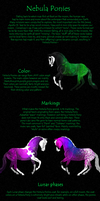 Nebula Ponies Breed Sheet by Squiggy-Adoptables