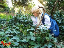 APH- Talking with Fairies by meiko-taka