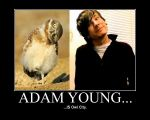 Adam Young... by realtimelord