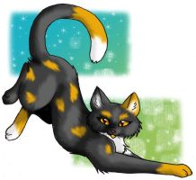 Patchpaw by CaptainMorwen