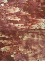 texture: rusty red by cyborgsuzystock