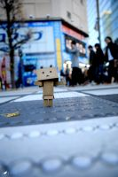Adventures of Danbo - Akihabara by LarkVisuals