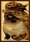 sepia ..cat in hat.. by miapicassa