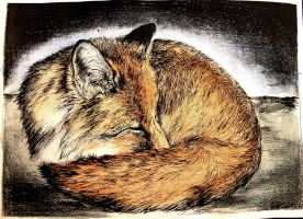 Dreaming fox by neon999