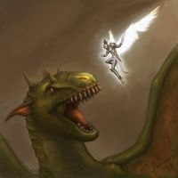 Paladin Vs Dragon by philldwill
