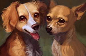Tiny Dogs by Spikie