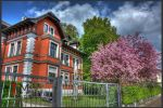 Spring 2013 HDR by gogo100878