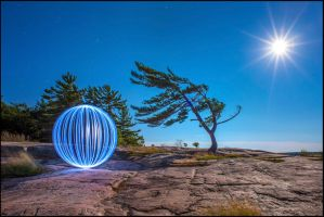 Wind Swept Pine Orb And Moon by Lymanjames