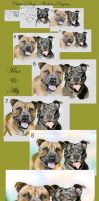 Claire's Dogs WIP Final by Lynne-Abley-Burton