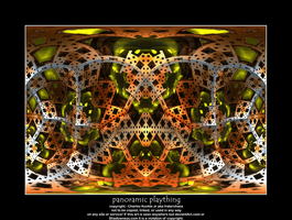 panoramic plaything by fraterchaos