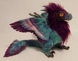 feather-raptor:purple/aqua by kimrhodes