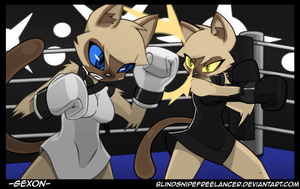 Commission - Cat Fight by BlindSnipeFreeLancer