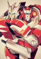 MTMTE: Drift and Ratchet by c0ralus