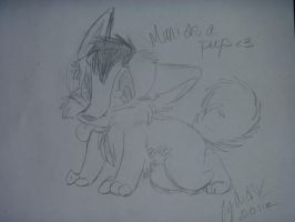 Mimi as a baby pup by BrownWolf19