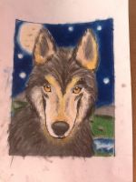 Random Oil Pastel Wolf by christfollower4life