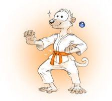 7th Kyu in Karate by Paperiapina