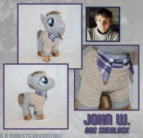John W. Pony Plush by s-k-roberts