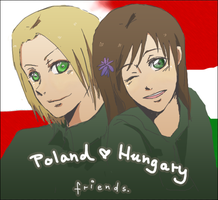 Poland x Hungary_id contest by daim0z