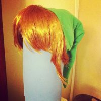 Link's Wig by SonicLucario