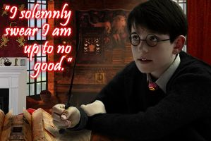 I Solemnly Swear I'm Up to No Good by hk-1440