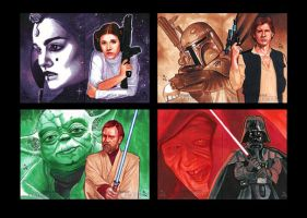 Topps Star Wars GALACTIC FILES Puzzles 1 by MJasonReed