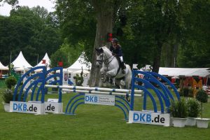 Show Jumping Stock 009 by LuDa-Stock