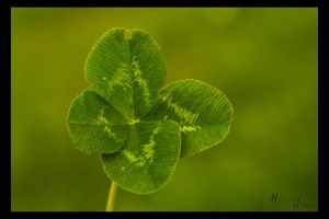 good luck by Nadine2390