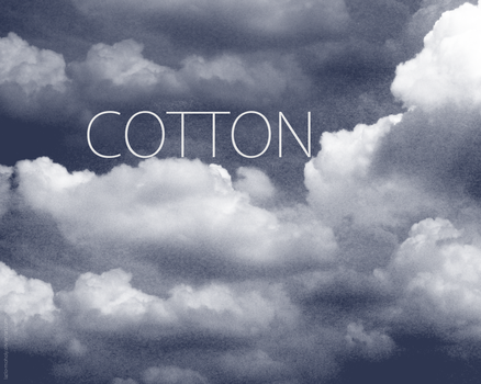 Cotton by Lazlo-Moholy