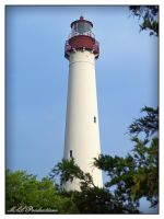 Cape May Lighthouse 3 by Dracoart