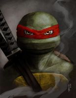 Intense Gaze by Ninja-Turtles