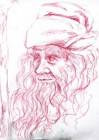Radagast, the brown II by Karolina5n