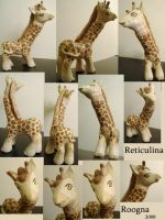 Reticulina the Giraffe Pony by Roogna