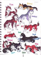 Balto's Grandkids: Dog Side by WhiteFangKakashi300