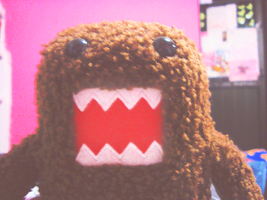 domo is love by xPaw-chanx