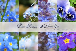 Blue Flower Stock Set by AuroraWienhold