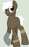 male pony for Pwrcat70 by junetheicecat