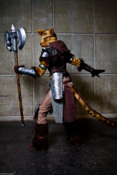 The feline warrior by LuceCosplay