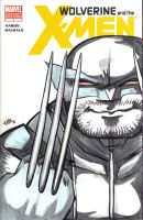 SKETCH COVER Wolverine and the X-Men 1 by jasinmartin