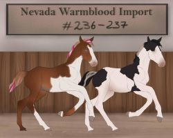 NW 326-327 Rivendale-Equestrian by BRls-love-is-MY-Live