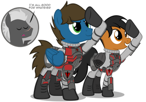 PS2 Ponies - Terran Republic by MrLolcats17