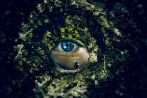 Mother Nature's Eye by akenord