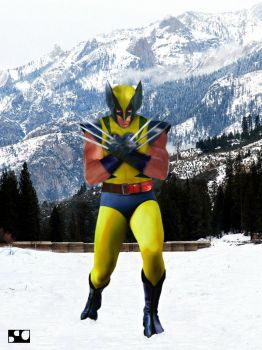 Wolverine - Classic Costume by sonLUC